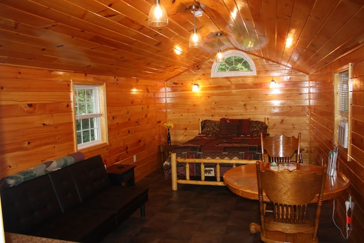 Penn Yan/Keuka Lake/Wine Trail, Outlet Trail Cabin