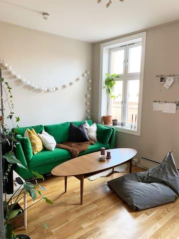 Koselig leilighet midt på Grunerløkka