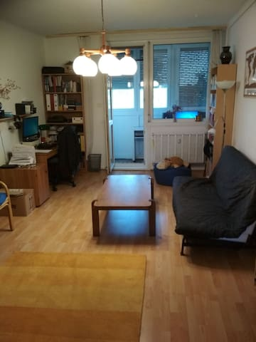 Two rooms flat close to the subway line 3