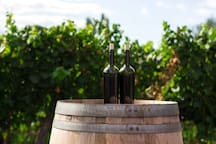 Stahlecker House is located just a few minutes drive to the Carneros Wine Region.