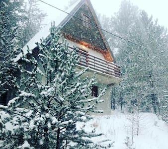 Cabin Rujište