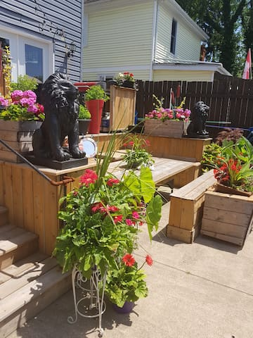 Backyard deck area....with you guessed it more flowers  to feast your eyes on.