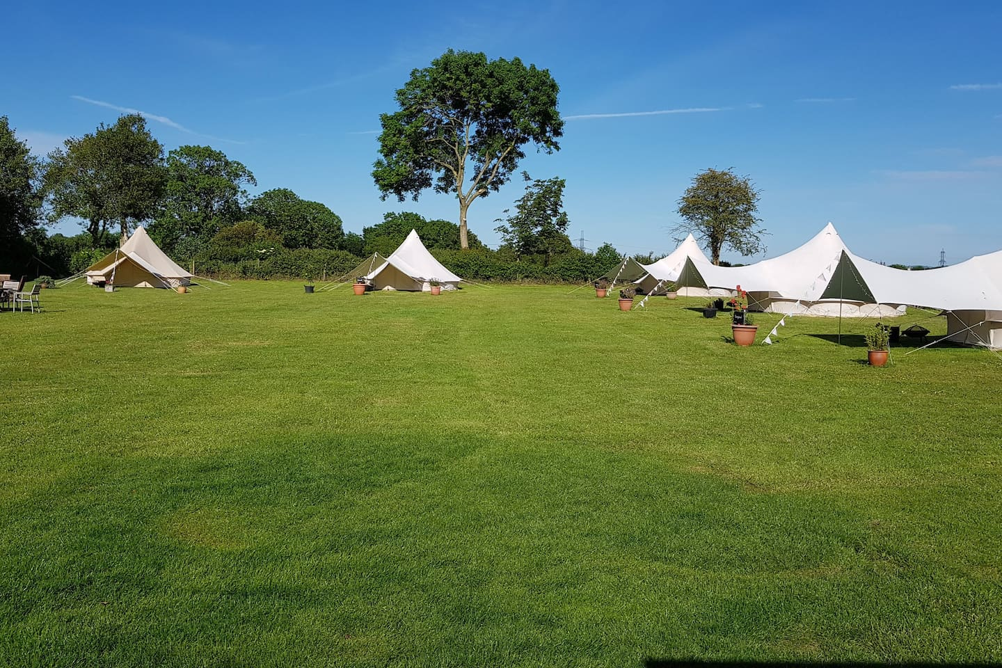 The campsite showing all 5 bell tents