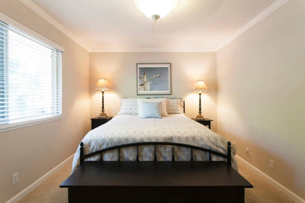 Large master bedroom with walk-in closet