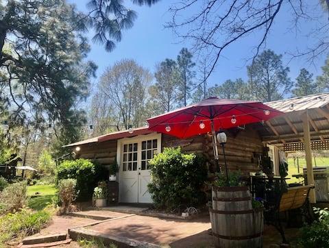 Congaree Vines - Cabane en rondins rustique sur un vignoble!