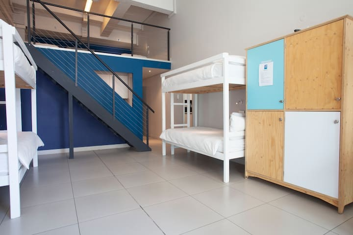 4 Bed Pine Bunk Mixed Dorm (ST) - The MOJO Hotel