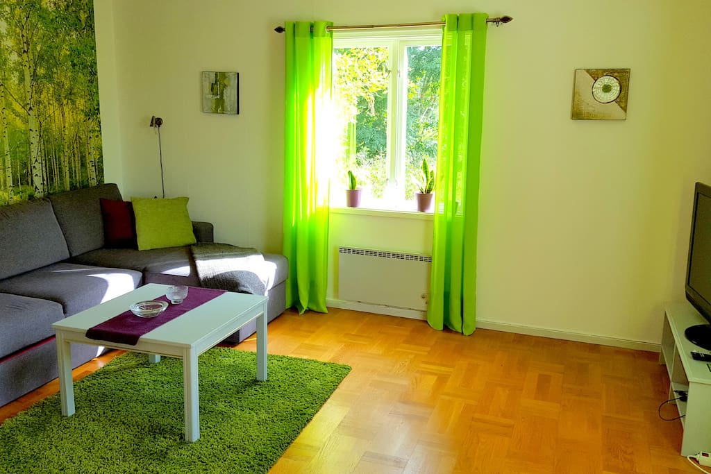 Living room with a sofa bed for 2 persons