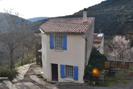 Vigne - dream away in Minervois - La Livinière