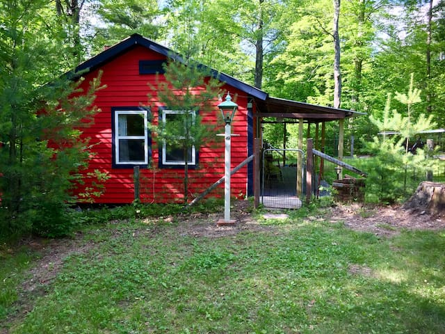 Secluded Woodland Camp