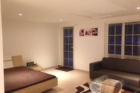 Charming Studio (sleeps upto 4) - Genthod - Appartement