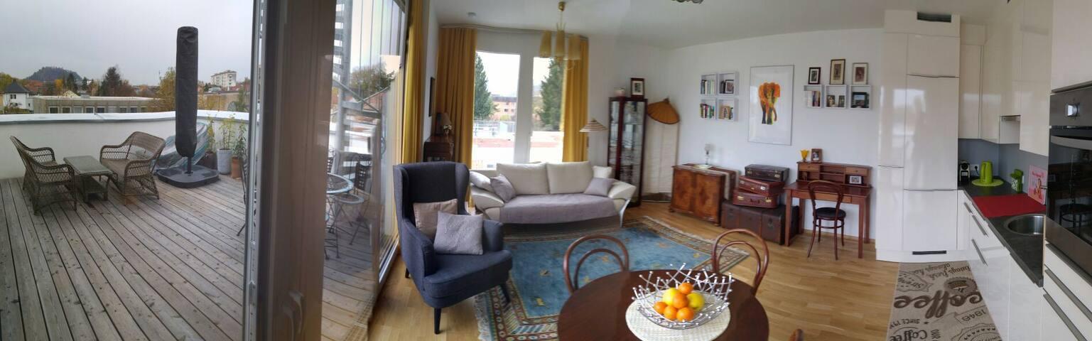 Dachterrassenwohnung mit Schlossbergblick - Graz - Apartment