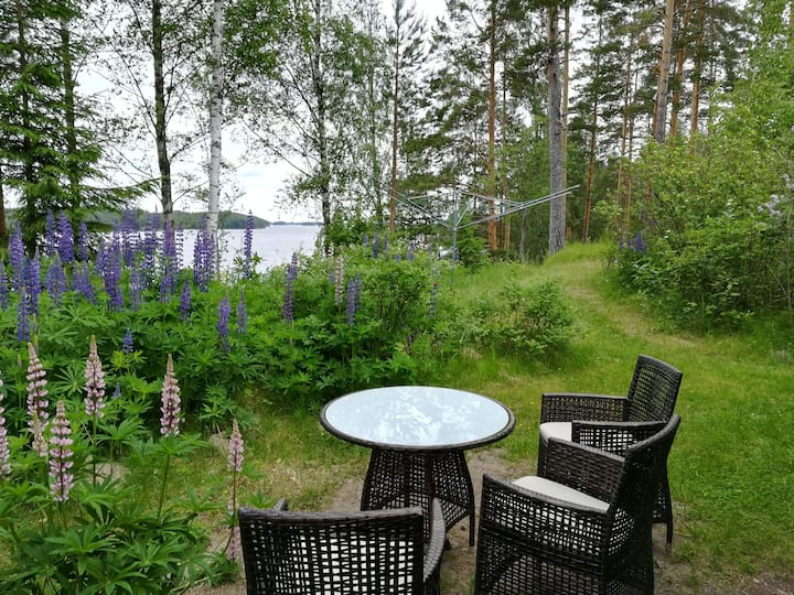 Listen to the nature at the Saimaa