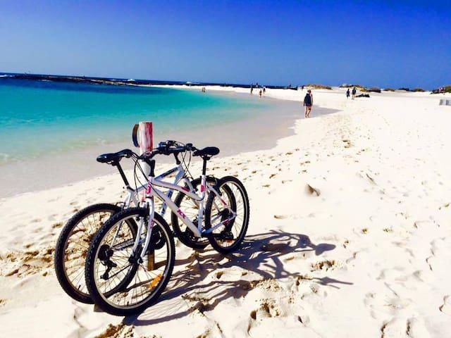 Paradise Island is Fuerteventura! - Corralejo