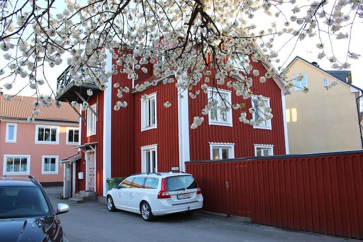 GOLDENEYE Kalmar Sweden