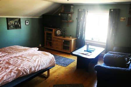 Room 300 meters from ICEHOTEL