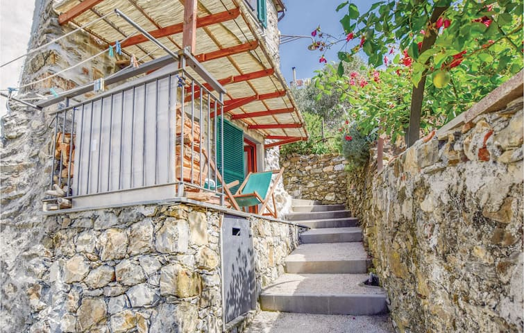Terraced house with 2 bedrooms on 53m² in Legnaro Levanto SP