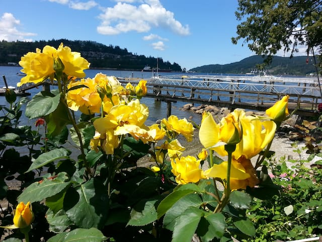 Waterfront setting 1 Private Br Suite PortMoody BC - Port Moody - Hus