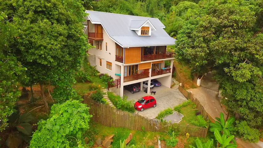 "Fler Payanke ""Forest"" apartment - Anse Royale - Apartment"