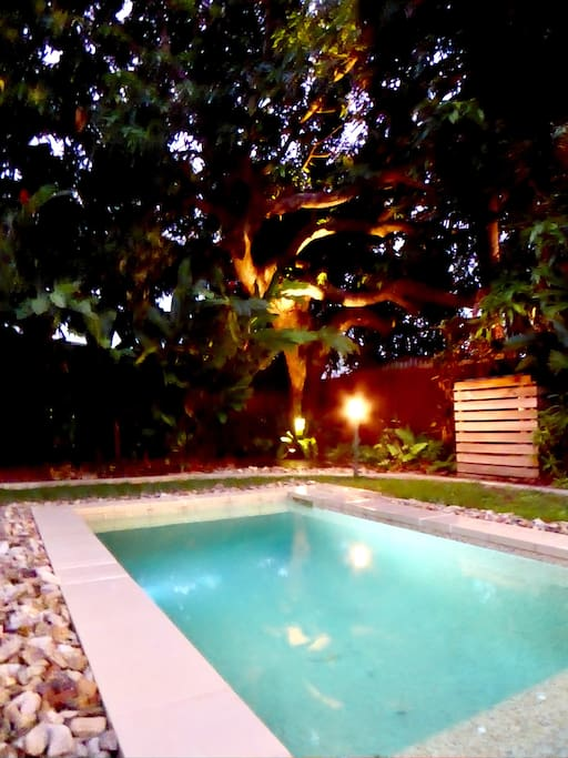Private plunge pool and tropical garden