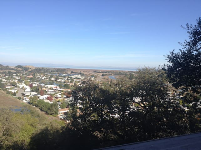 Modern 1br/1ba balcony views - San Rafael - Appartement