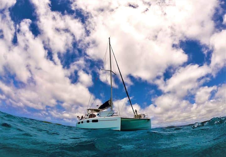 Waiheke Island Auckland Luxury Sailing YACHT