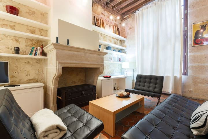 Cosy 65 m2 loft in the heart of Latin quarter