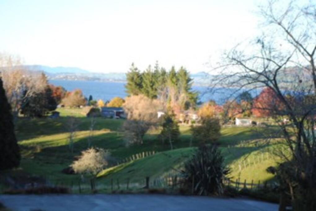View Lake Rotorua