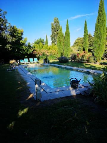 Grande piscine en pierre avec pataugeoire et dénivelé progressif