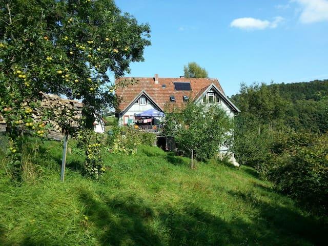 Helle, gemütliche Wohnung mit Balkon - Gersfeld (Rhön) - Dom wakacyjny
