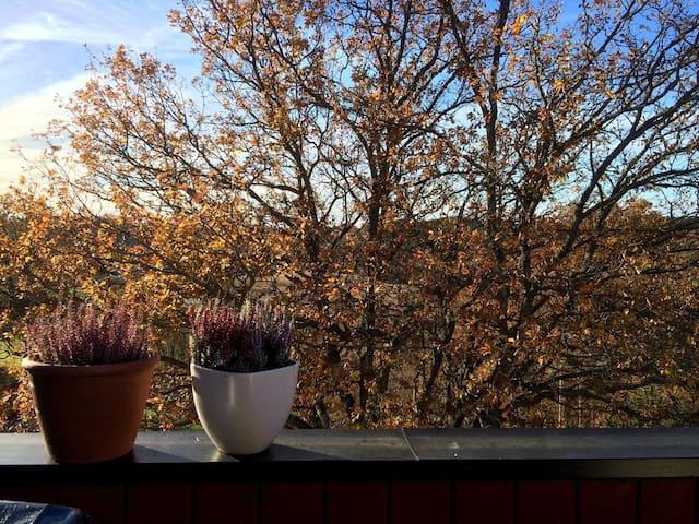 Leilighet ved marka - Fredrikstad - Apartamento
