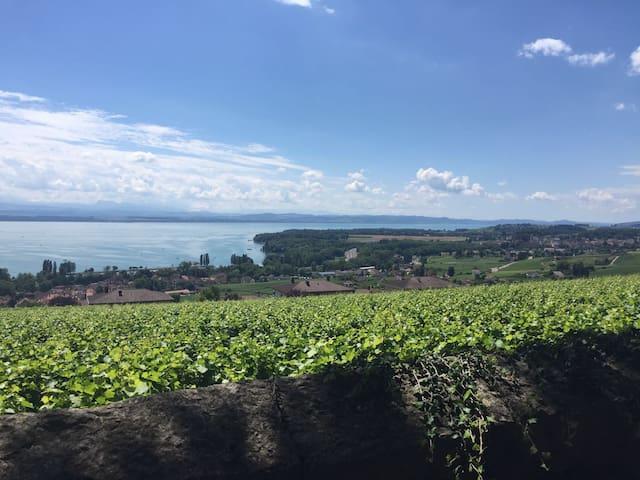 Maison vigneronne jardin et terrasse - Cormondrèche - Lejlighed