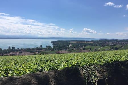 Maison vigneronne jardin et terrasse - Cormondrèche