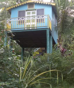 Eco-Cottage on the edge of a rainforest - The Twin - Lucea