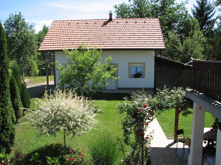 House Ilija,  One-Bedroom Apartment