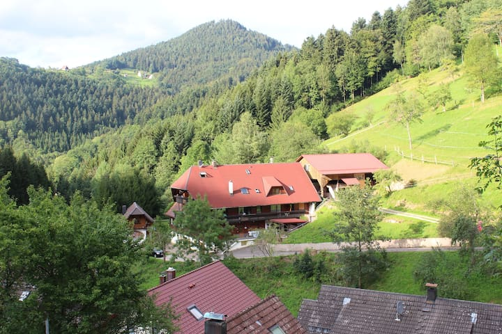 Einzimmerappartement Ferienparadies Maierbauernhof - Bad Peterstal-Griesbach - Apartment