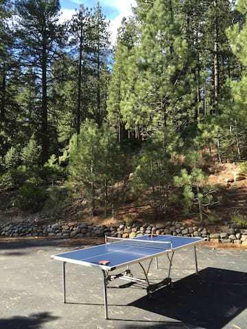 Outdoor table tennis, darts and horse shoe games!