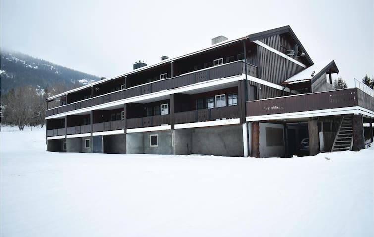 Holiday apartment with 2 bedrooms on 65m² in Hemsedal