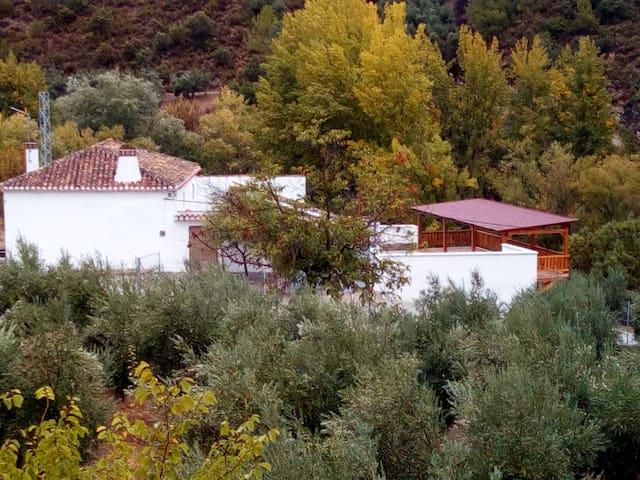 """Alojamiento rural """"El Higuerón"""" - Montefrío - Rumah"""