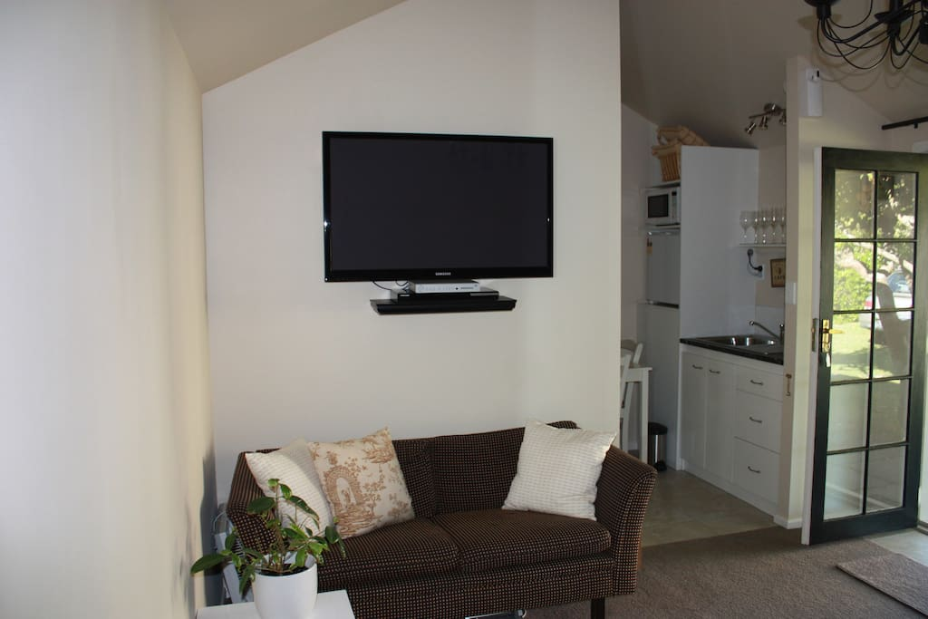 Flat Screen TV with couch