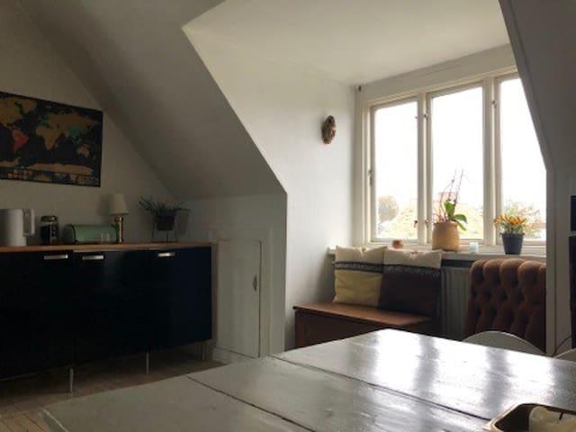 Cozy apartment for rent in Copenhagen!