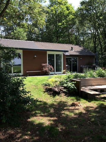 Vlinder, mooi huisje in Ruinen Drenthe
