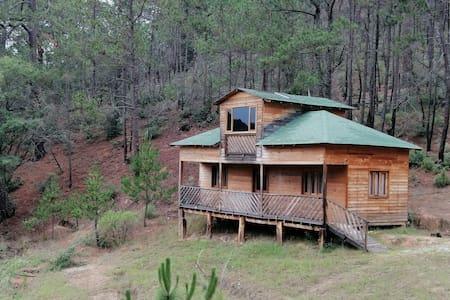 Cabaña  '' El pinalito ''