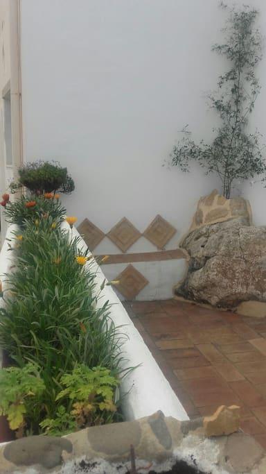 terraza delantera