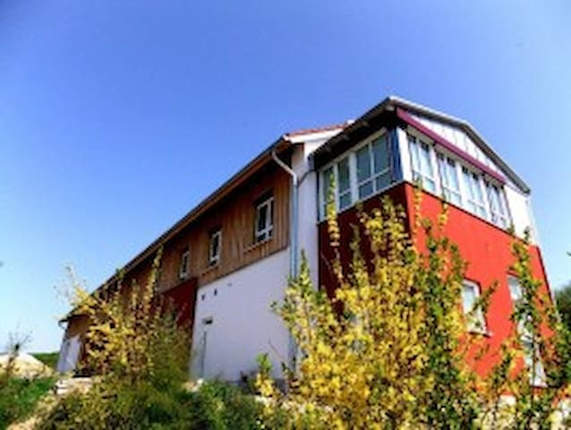 Wohnung 101 - Erdweg - Apartment