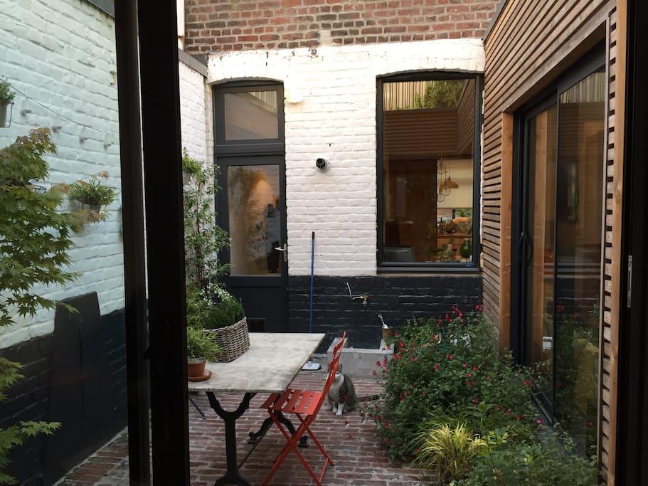 magnifique maison dans lille maisons louer lille nord pas de calais france. Black Bedroom Furniture Sets. Home Design Ideas