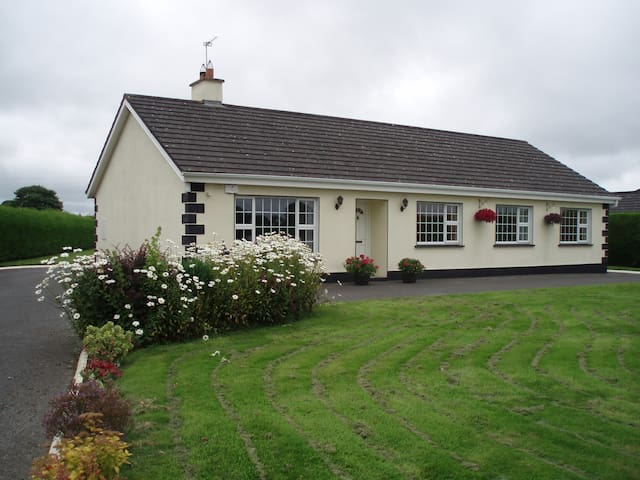 Modern bungalow with 4 bedrooms near Tullamore - Offaly - Bungalow