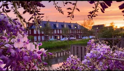 The Hague's charming home with water view.