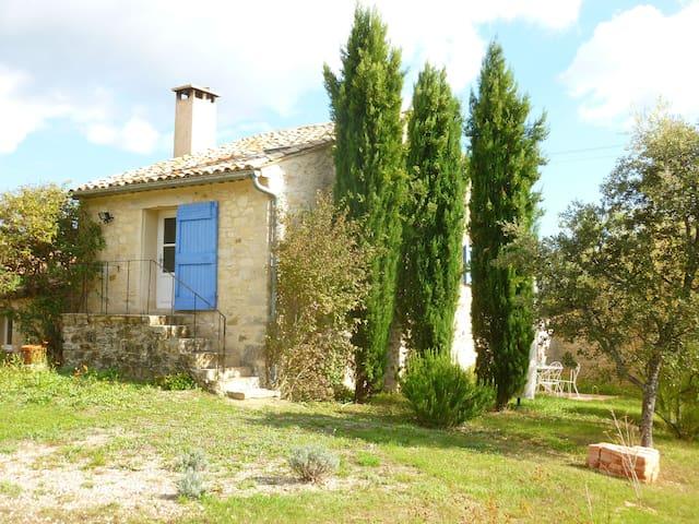lavandes, nature sauvage et piscine - Banon - House