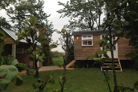 Shepherds Hut at Cardeeth - Cresselly