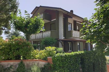 Federico guest house